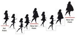 Η θεωρία του set point